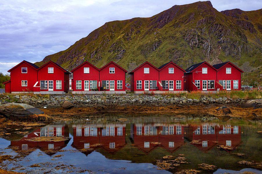 Typische vissershuisjes in Lofoten van Roy Poots