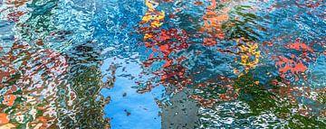 Reflecties in het water van René van Leeuwen