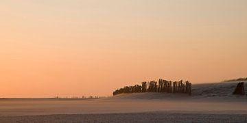 Wind am Strand von Barbara Brolsma