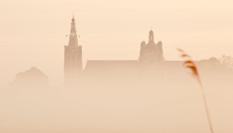 Den Bosch ontwaakt uit de mist van Jasper van de Gein Photography