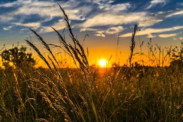 Zonsondergang in de natuur von Michel van der Vegt