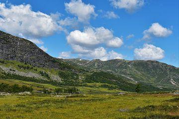 Das norwegische Gebirge von Naomi Elshoff