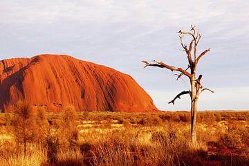 Uluru (Ayers Rock) Outback