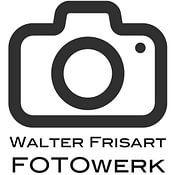 Walter Frisart profielfoto