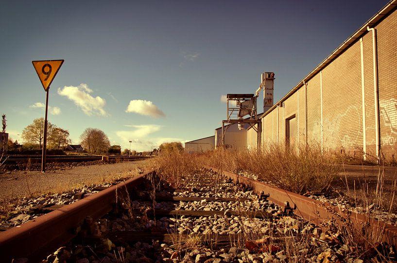 Abandoned railway. von Martijn Van Hoeflaken