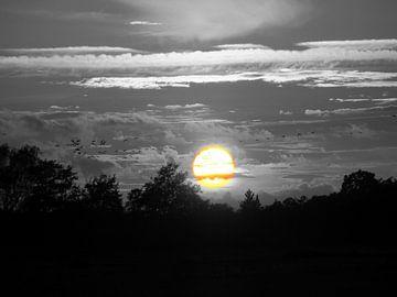 Vlucht naar de zon. Flight to the sun. von Joke Schippers