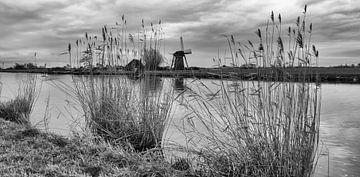 Zwart/Wit Fotografie - Lisserdijk... van Bert - Photostreamkatwijk