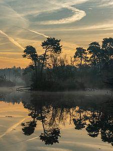Magical morning II van Diane van Veen