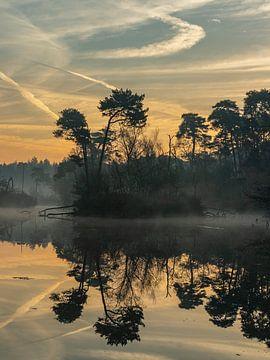 Magischer Morgen II von Diane van Veen