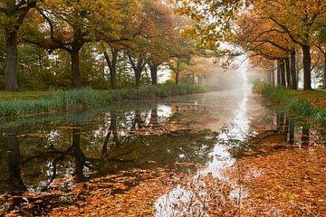 Nevelige herfst ochtend aan het Apeldoorns Kanaal van Cor de Hamer