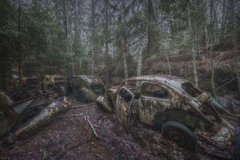 Volkswagen Käfer Stau von Maikel Brands