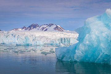 Prachtige ijsbergen! van Joy van der Beek