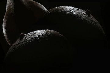 Schwarz Weiß Makroaufnahme. Obstschale: Äpfel mit Birnen. (Brüste) von Cor Heijnen