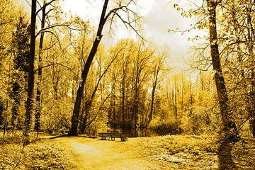 Gouden Amsterdams Bos van Hendrik-Jan Kornelis