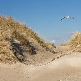 Strand en Duinen; van Tonny Visser-Vink