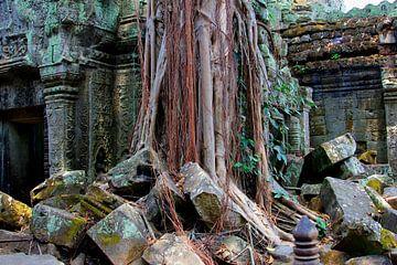 Ta Prohm tempel ruïne van Inge Hogenbijl