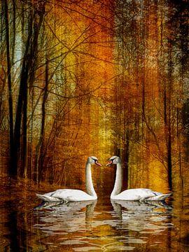 Zwanenmeer - Liefde in de herfst van Christine Nöhmeier