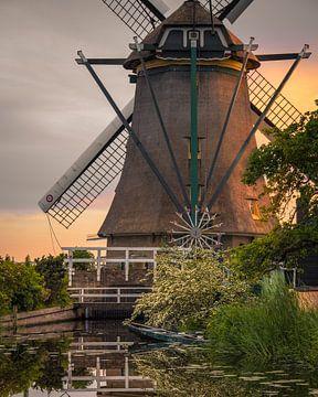 Warmes Sonnenlicht auf der Mühle von Wilco Bos