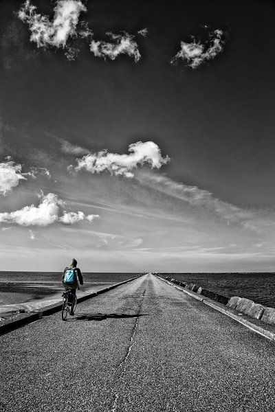 De eenzame fietser van Tonia Beumer