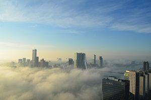 Rotterdam ontwaakt in de vroege ochtend