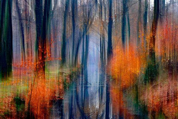 herfst  schilderij van Niels  de Vries
