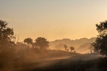 Dünen im Nebel von Ed Klungers
