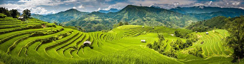 Panorama des rizières sur Jeroen Mikkers