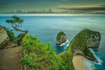 La plage de Kelingking sur l'île de Nusa Penida à Bali sur Anges van der Logt
