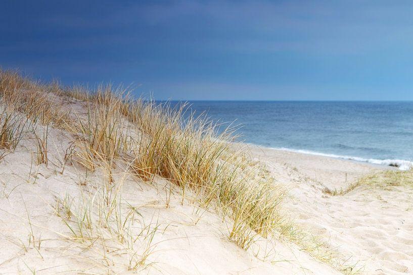 Dune au bord de la mer sur Frank Herrmann