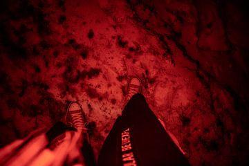 RED Steps von vdBrink