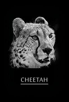 Gepard von Leopold Brix