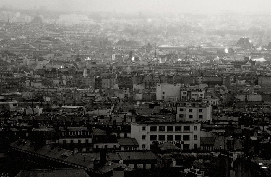 View over Paris. van Esh Photography