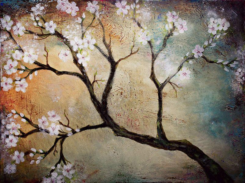 Kirschblüten (Cherisblüte) von Els Fonteine