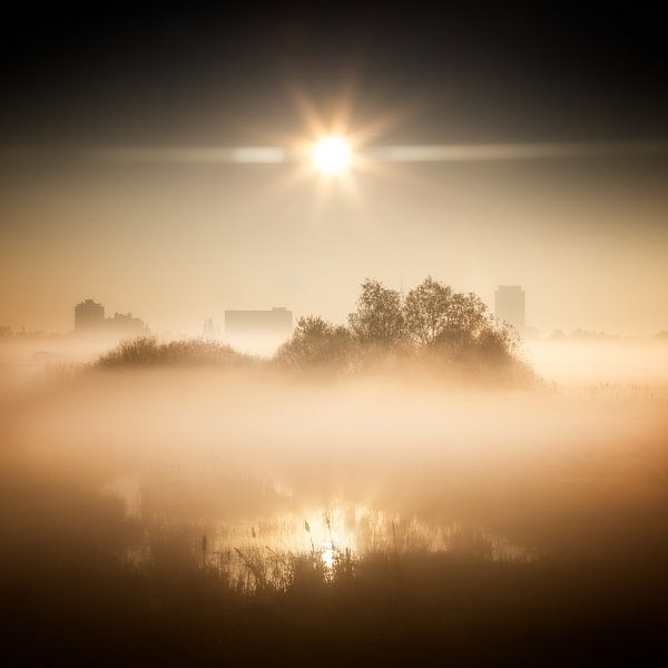 All quiet under the sun van Ruud Peters