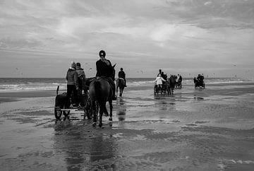 Pferde am Strand von Wissant von Cathfish photography by Cathie Lefieuw