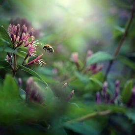 Pollination I van Maayke Klaver
