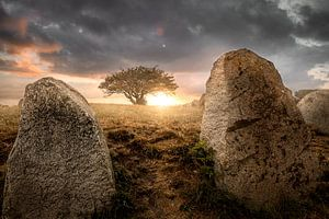 "Groot stenen graf ""Reuzenberg""Nobbin"" Grote stenen graf"" Nobbin"