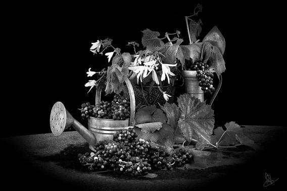 Stilleven in zwart en wit met druiven- Still life with grapes in black and white van Marianne van der Zee