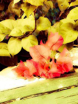 Oranje  wilde bloemen van Renee Alexandra Serlier