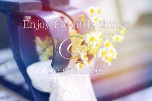 Enjoy the little things van