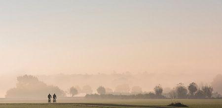 Radfahrer in den Wiesen im Morgennebel