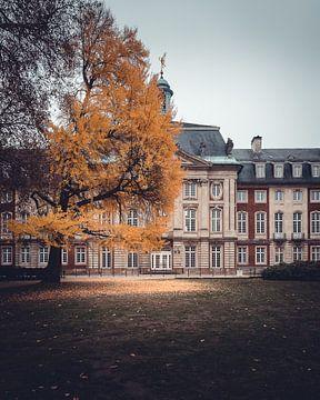 Het kasteel in Münster van Steffen Peters