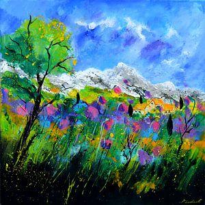 Provence 779121 van pol ledent