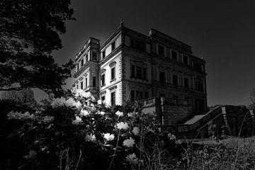 Nachtspaziergang (schwarz/weiß)