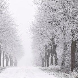 Winter in Zeeland van Frank Peters