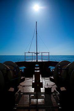 Chasing the sun van Leon van Voornveld