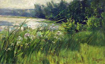 Kemnitzer Heide, KARL HAGEMEISTER, 1893
