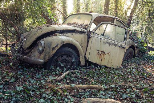 VW Bug van Kristof en Petra