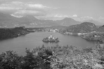 Bleder See, Slowenien Schwarz und Weiß von Janet Kleene