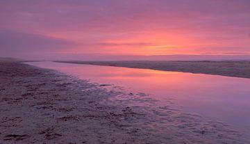 Sunsat at the beach sur Koos de Wit